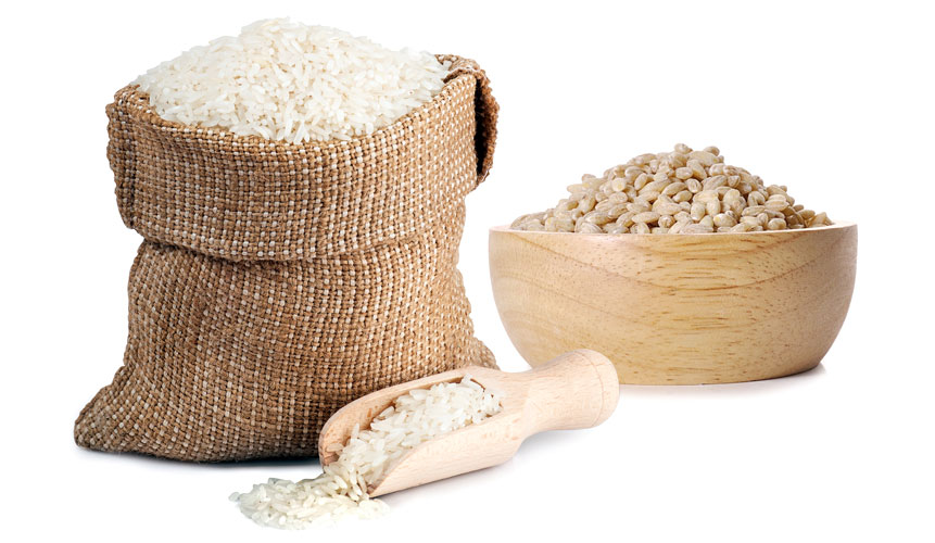 photo of rice and grain